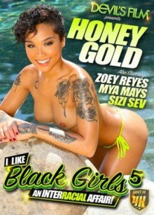 I Like Black Girls 5 – An Interracial Affair (720p)